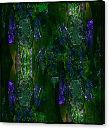 Canvas Print featuring the photograph Aura by Robert Kernodle