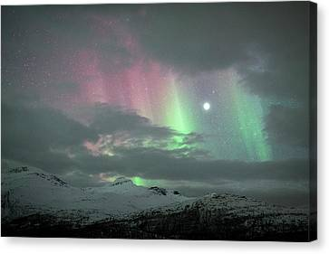 Aurora Borealis And Jupiter Canvas Print by Tommy Eliassen