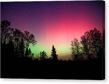 Aurora In Autumn Canvas Print