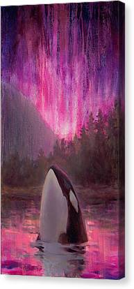 Aurora Orca Canvas Print by Karen Whitworth