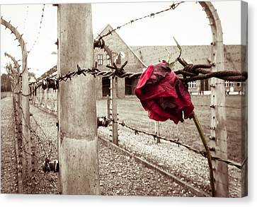 Auschwitz Canvas Print by Ian Hufton