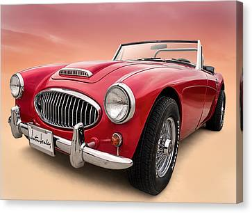 Austin Healey Canvas Print by Douglas Pittman
