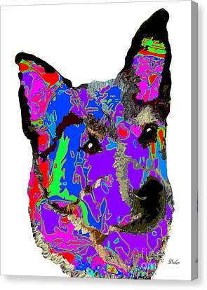 Australian Cattle Dog Canvas Print by Dalon Ryan