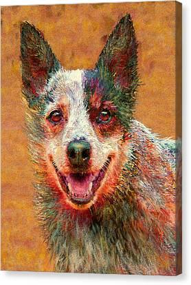 Australian Cattle Dog Canvas Print by Jane Schnetlage