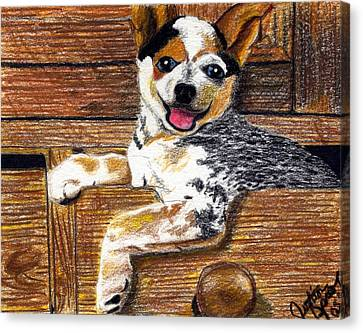 Australian Cattle Dog Puppy Canvas Print by Olde Time  Mercantile