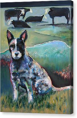 Australian Cattle Dog With Coat Of Many Colors Canvas Print