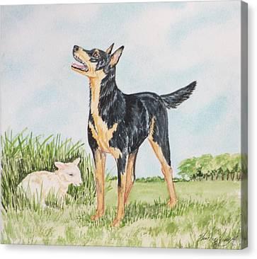 Australian Kelpie Canvas Print by Heather Anderson