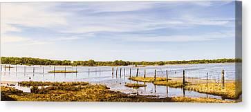 Australian Mangrove Landscape Panorama Canvas Print by Jorgo Photography - Wall Art Gallery