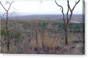 Canvas Print featuring the photograph Australian Outback by Tony Mathews