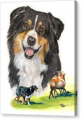Australian Shepherd Herding Canvas Print