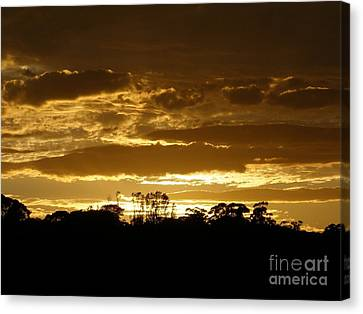 Canvas Print featuring the photograph Australian Sunrise by Bev Conover