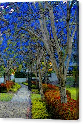 Australia's Blue Blossoms Canvas Print by Lenore Senior and Constance Widen