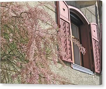 Austrian Spring Canvas Print by Ann Horn