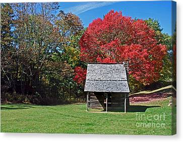 Autum For A Mountain Home Canvas Print by Skip Willits