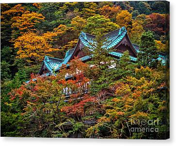 Autum In Japan Canvas Print by John Swartz