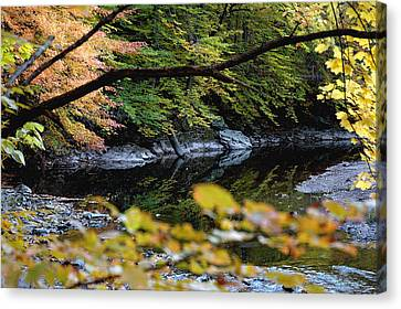 Canvas Print featuring the photograph Autum In Philadelphia by Dorin Adrian Berbier
