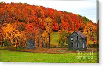 Autumn Abandoned Canvas Print