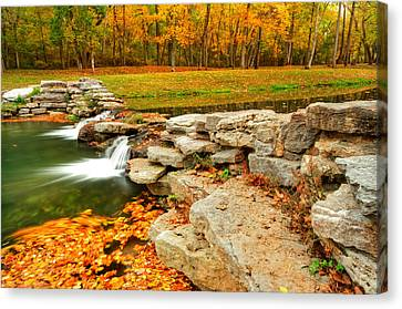 Autumn Leaf On Water Canvas Print - Autumn Ablaze by Gregory Ballos