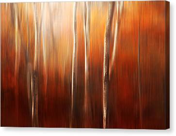 Autumn Abstract Canvas Print by Magda  Bognar