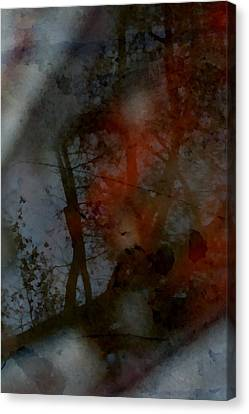 Canvas Print featuring the photograph Autumn Abstract by Photographic Arts And Design Studio