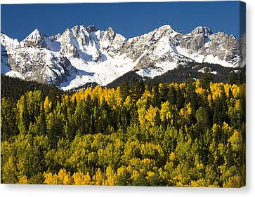 Autumn And Snow Covered Peaks North Canvas Print by Tom Vezo