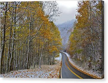 Autumn And Winter Canvas Print by Susan Leggett