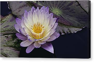 Autumn Aquatic Bloom Canvas Print