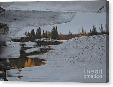 Autumn Arising Canvas Print