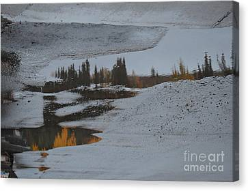 Autumn Arising Canvas Print by Brian Boyle