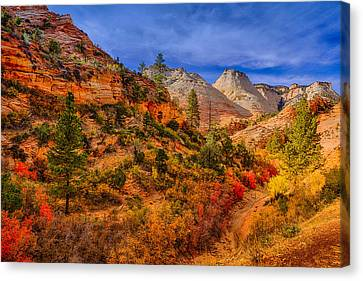 Canvas Print featuring the photograph Autumn Arroyo by Greg Norrell