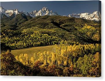 Populus Tremuloides Canvas Print - Autumn Aspen Trees And Mount Sneffels by Adam Jones