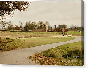 Autumn At Bradgate Park  Canvas Print by Linsey Williams