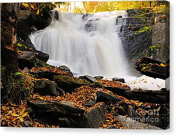 Autumn At Cattyman Falls Canvas Print by Larry Ricker