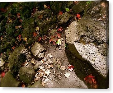 Autumn At Hallasan Canvas Print by Yen
