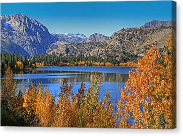 Canon 7d Canvas Print - Autumn At June Lake by Donna Kennedy