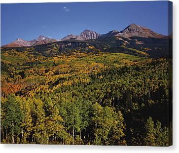 Autumn At Mt. Wilson Canvas Print