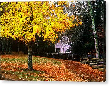 Canvas Print featuring the photograph Autumn At Old Mill by Rodney Lee Williams