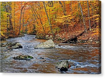 Autumn At The Black River Canvas Print by Dave Mills