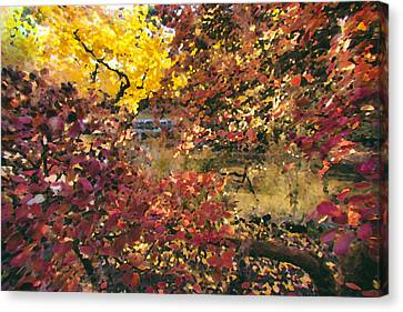 Autumn At The Park Canvas Print