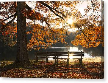 Autumn Beauty Canvas Print by Debra and Dave Vanderlaan