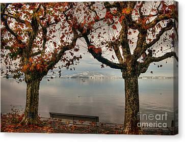 Autumn Bench Canvas Print by Caroline Pirskanen