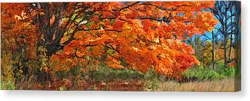 Autumn Blaze Panorama Canvas Print by Christopher Arndt