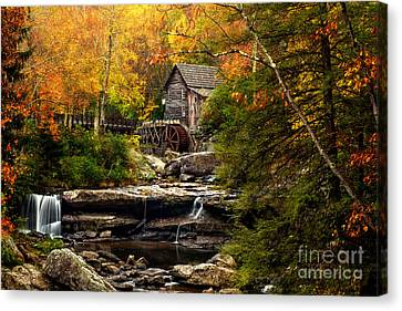 Autumn Bliss Canvas Print by Deborah Scannell