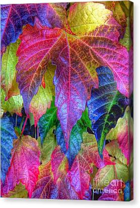 Autumn Bold Canvas Print