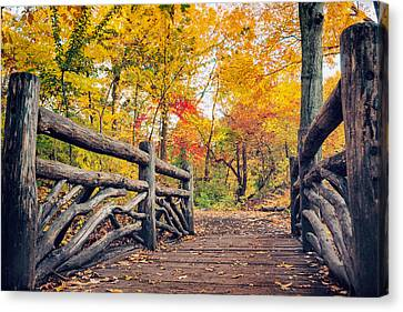 Autumn Bridge - Central Park - New York City Canvas Print by Vivienne Gucwa