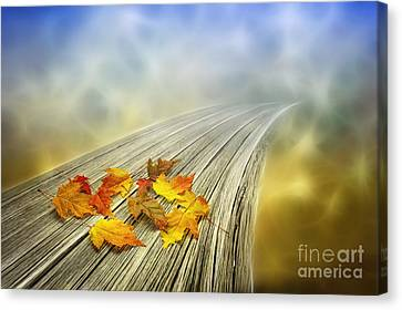 Autumn Bridge Canvas Print by Veikko Suikkanen