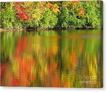 Autumn Brilliance Canvas Print by Ann Horn