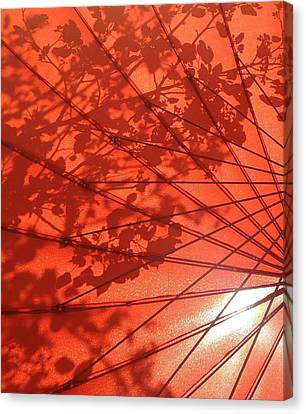 Autumn Butterfly Canvas Print by Brenda Pressnall