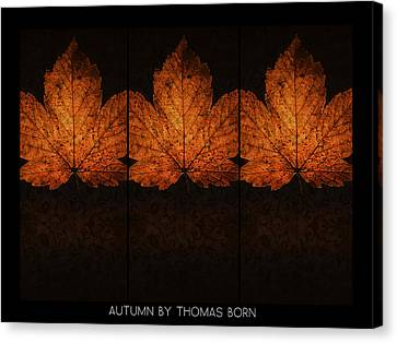 Canvas Print featuring the photograph Autumn By Thomas Born by Thomas Born