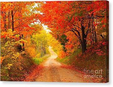 Canvas Print featuring the photograph Autumn Cameo 2 by Terri Gostola